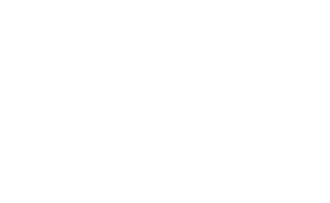 Roeschke-Werbeagentur-Kunden-Logo-Steifensand